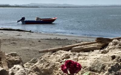 Un pescador de Bocas de Ceniza da cátedra de energía solar